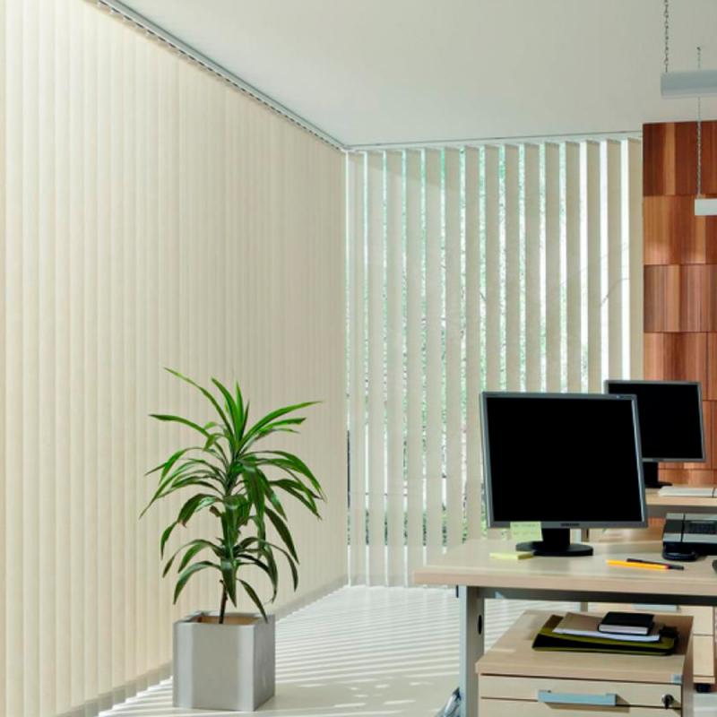 COCLHAS DE VERANO